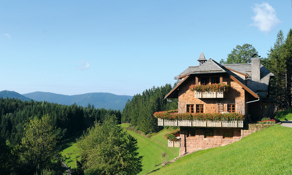 Dollenberg Hütte